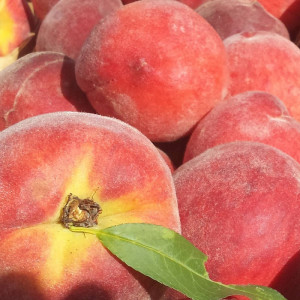 Yellow peaches,the kg