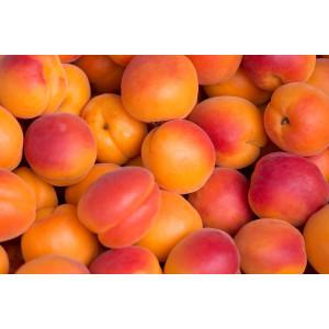 Abricots, les 500g