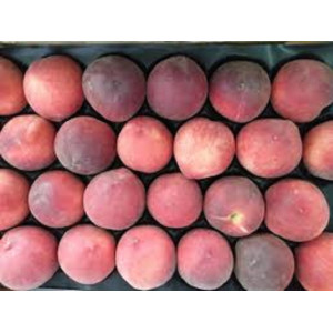 White peaches, the kilo