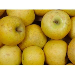 Pommes Chanteclerc , le kilo