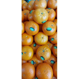 Clementines Nadorcot, the kilo